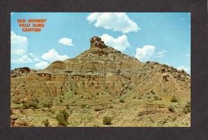 TX Sad Monkey Palo Duro Canyon State Park near Amarillo Texas Postcard