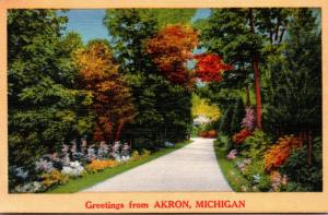 Michigan Greetings From Akron