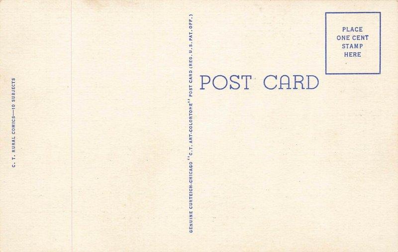 C-625 Ray Walters DeRooster Do De Crowin Chicke Lays DeEgg Curt Teich Postcard