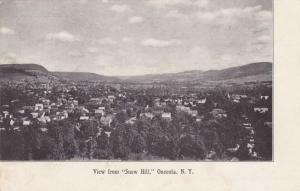 Oneonta NY, New York - The View from Snow Hill - UDB