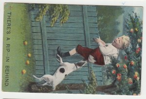 P2219, 1910 comic postcard dog bites boy climing over fence to get away