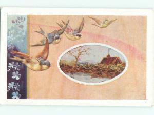 Divided-Back BIRDS SCENE Pretty Postcard AA8937