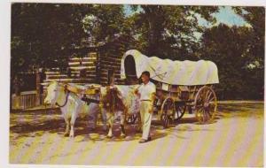 Conestoga Wagon w/ Ox Team Paleface & Redskin, New Salem State Park, Illinois