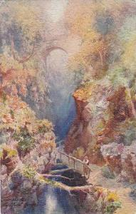 AS, Lydford Gorge, Tavistock (Devon), England, UK, 1900-1910s