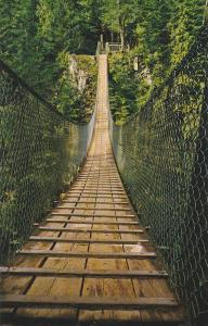 Suspension Bridge over Lynn Creek in lovely Lynn Canyon Park, North Vancouver...
