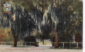 Florida Jacksonville Entrance To Riverside Park