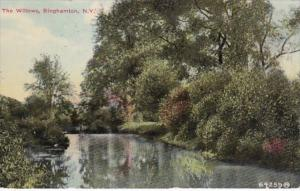 New York Binghamton The Willows 1910