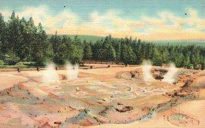 Vintage Postcard 1941 Fountain Paint Pots Lower Geyser Basin Yellowstone Park WY