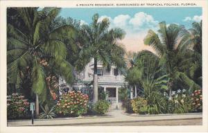 A Private Residence Surrounded By Tropical Foliage In Florida 1932 Curteich