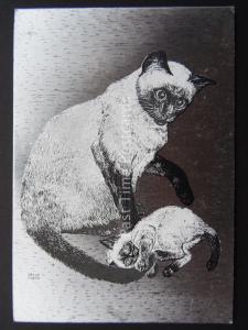 Pussy Cat SIAMESE CATS c1980's by F J Warren DUFEX FOIL Postcard