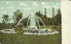 Dukes Park, Somerville, N.J.