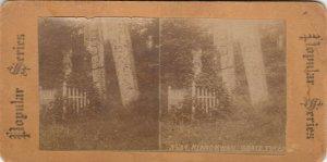 SV : Klanc-Kyan Grave Totem , Alaska , 1890s