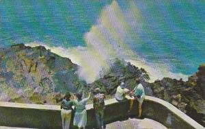 Hawaii Honolulu The Blow Hole