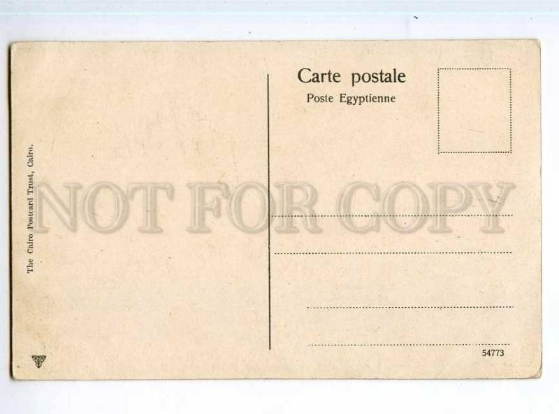 247264 EGYPT ALEXANDRIE Rue Cherif Pacha Vintage postcard