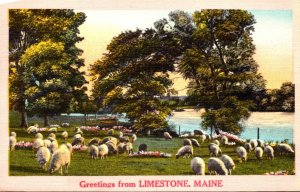 Maine Greetings From Limestone