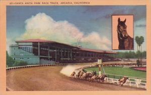 California Arcadia Santa Anita Park Race Track 1949