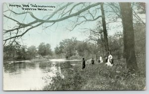 Owosso MI~Family in the High Grass by the Shiawassee River~c1910 C U Williams PC