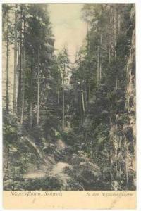 SACHS.-BOHM. Schweiz, 1890s, In den Schwedenlochern : Switzerland