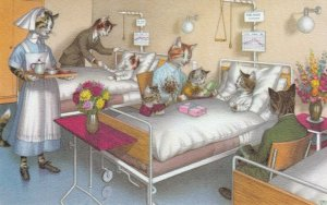 Alfred MANZIER ; Cats  ; 40-50s ; Hospital ; N0. 4879