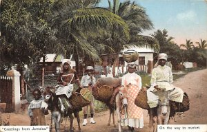 Jamaica, Jamaique Post card Old Vintage Antique Postcard On The Way To Market...