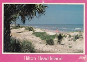 South Carolina Hilton Head Island Rolling Sand Dunes On The Beach 1996