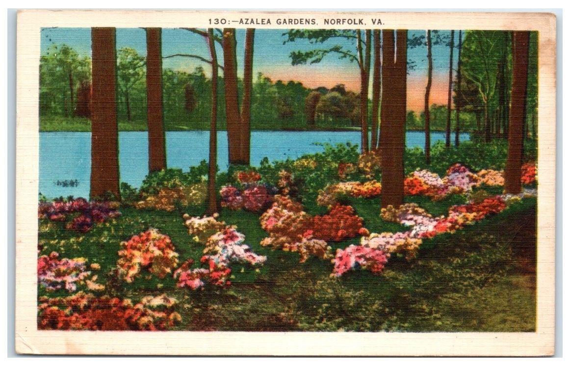 1952 Azalea Gardens, Norfolk, VA Postcard / HipPostcard