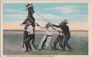 c1910 COWBOYS Postcard BUCKING BRONCHO Mount and Break Chaps West