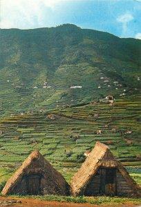 Portugal Postcard Funchal Madeira