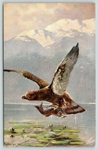Muller Artist Signed~Eagle Snatches Fish From Lily Pad Pond~Mountains~1908 HK&M
