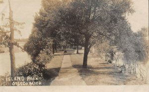 LPM29 Otsego Island Park   Michigan RPPC Postcard