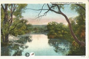 Palo Duro Canyon Near Amarillo Texas Vintage White Boarder Postcard