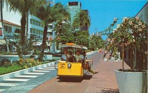 Exotic Lincoln Mall, Miami Beach, Florida unused Postcard