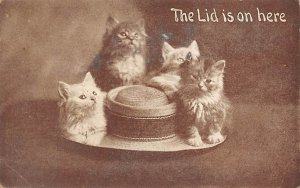 The Lid is on here Cat 1914 Missing Stamp