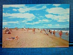 Chincoteague-Assateague Beach Sun Bathers East Coast Virginia Vintage Postcard