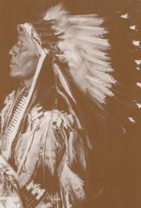 Chief Strange Horse Upper Brule Sioux Red Indian Western Postcard