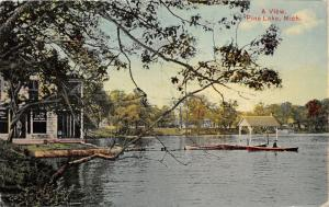 Pine Lake Michigan~Man in Boat~Pavilion on Dock~Window Signs on Stone House~1911