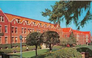 FL, Tallahassee FLORIDA STATE UNIVERSITY Reynolds~Jennie Murphree Halls Postcard