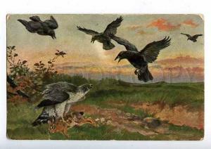 182863 HUNTING hawk and crows Vintage postcard