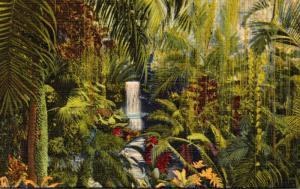 Ohio Cincinnati Eden Park Palm House Irwin M Krohn Conservatory Curteich