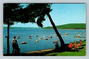 Pocono Mountains PA- Pennsylvania, Lake Wallenpaupack, Chrome c1960Postcard