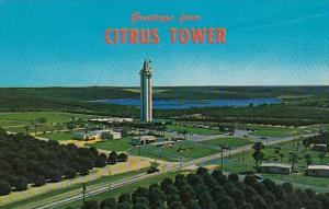 Greetings From Citrus Tower