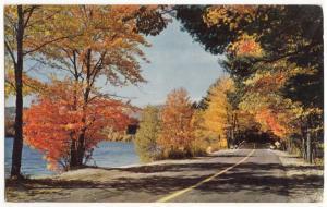 Lake Washington Boulevard, Seattle, unused Postcard