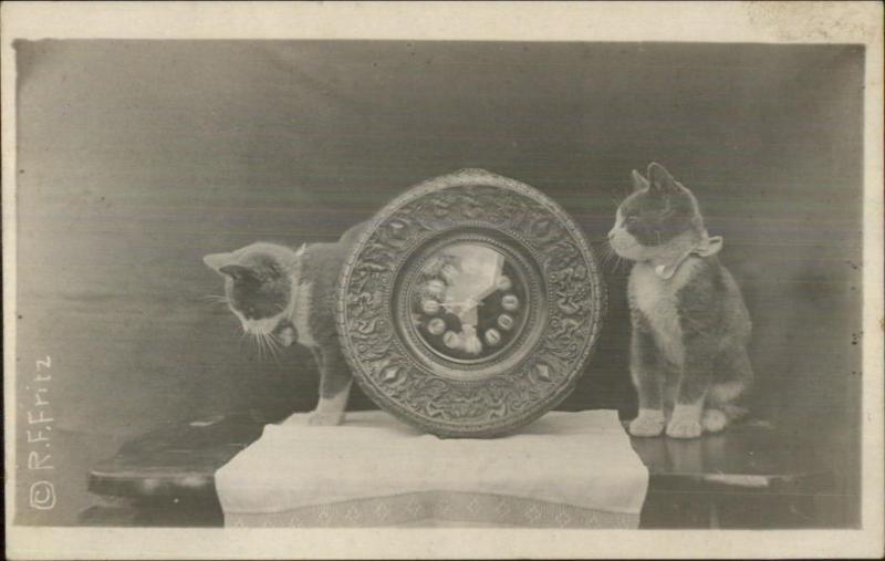 Kittens - Kitty Cats & Wood Carved Old Clock c1910 Real Photo Postcard #2