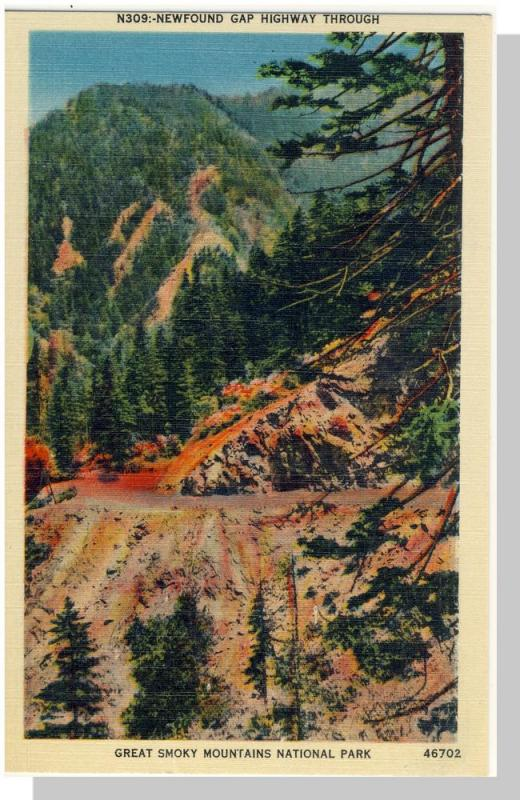 Smoky Mountains Nat'l Park,NC/TN Postcard,Newfound,Nr Mint!
