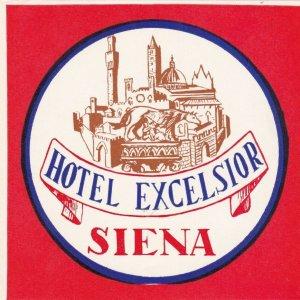 Italy Siena Hotel Excelsior Vintage Luggage Label sk3520
