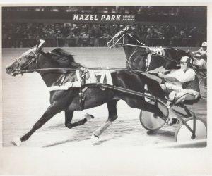 HAZEL PARK Harness Horse Race , GRACIOUS GANDER Wins , 1977
