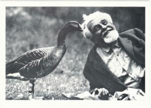Konrad Lorenz with a Greylag Goose Ethology Modern Postcard