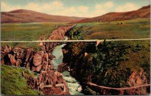 Colorado~RARE CARD---1950 Sapinero Bridge Over Lake Fork of the Gunnison River