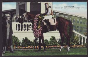 Gallahadion,1940 Kentucky Derby Winner Postcard