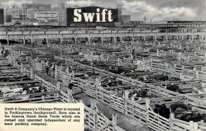 Swift & Co. Chicago  Packing Plant